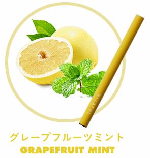 ビタフルのフルーツ系フレーバーグレープフルーツ
